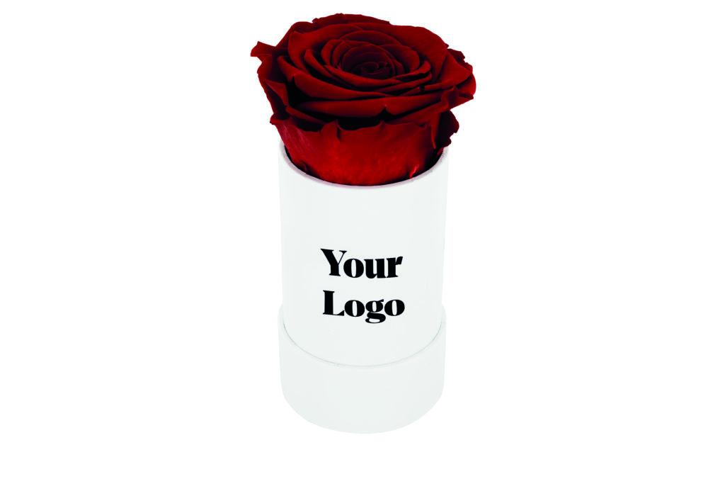 Pravé růže