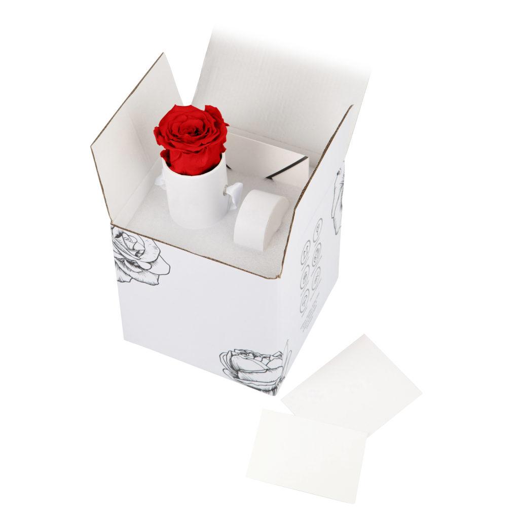 Dárkové balení s konzervovanou růž